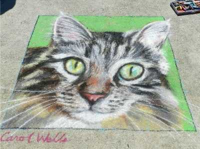 Cat Art Chalk