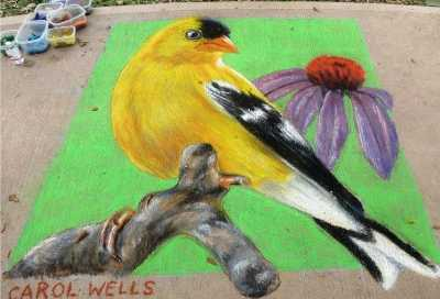 Goldfinch Art Chalk