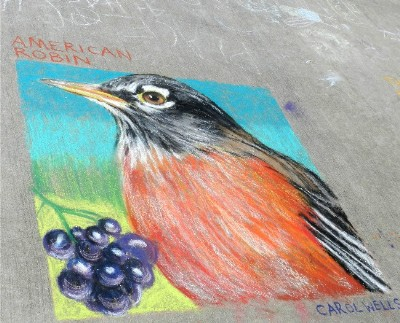 Bird Art Chalk