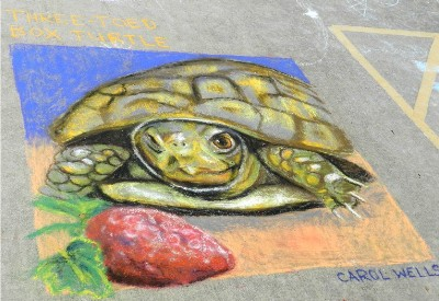 Turtle Art Chalk