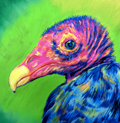 Chalk Pastel Vulture Wells
