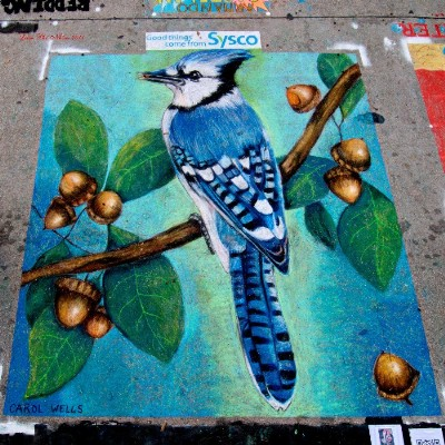 BlueJay Art Chalk